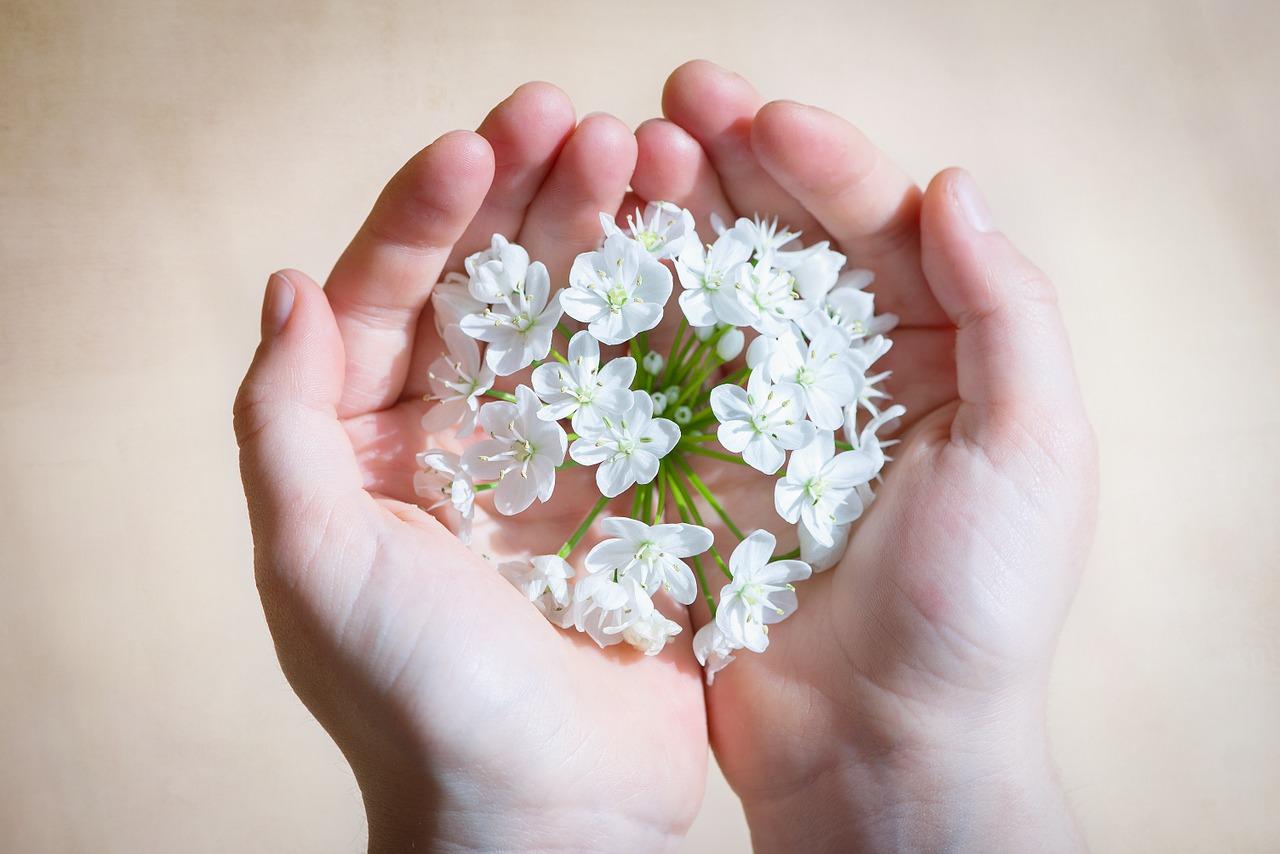 flower-care